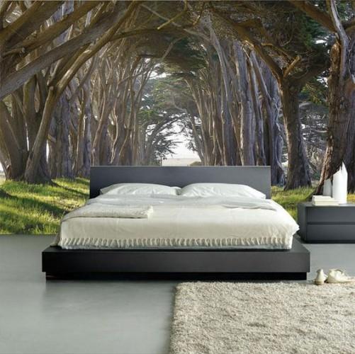 Fototapeta las w sypialni